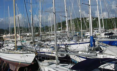 A full boatyard in Grenada this year