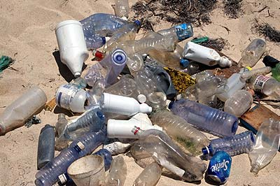 Plastic Bottles collected on Hog Island Grenada.
