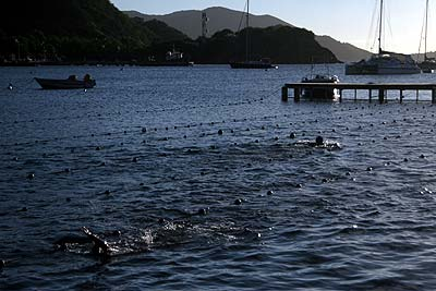 What better place for the local swim team to have practices than down in the bay. The lane markers are strung between two docks.